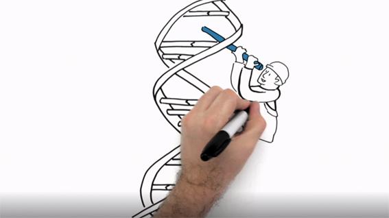 https://www.pharma-relations.de/news/amgen-studie-biopharmazeutika/image