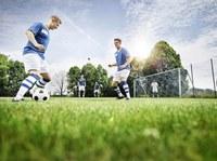 Zeckencheck: Fußballvereine gesucht