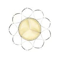 Erste Implantation der Transkatheter-Herzklappe Portico™ von St. Jude Medical